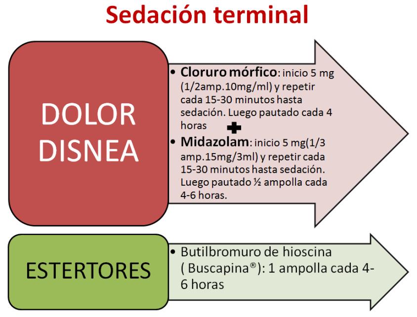 sedacion
