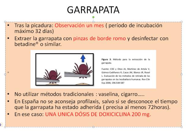 garrapata-3