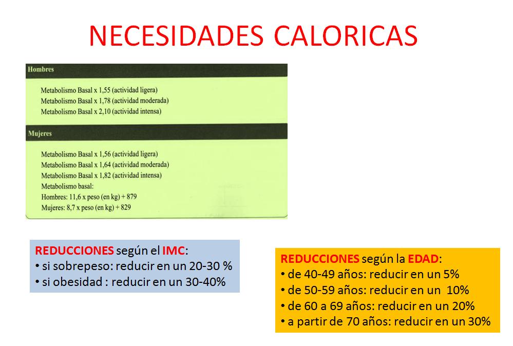 necesidades caloricas