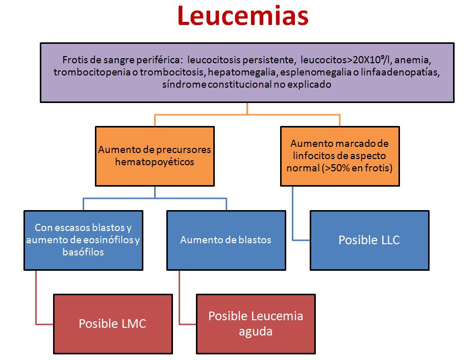 leucemia 3