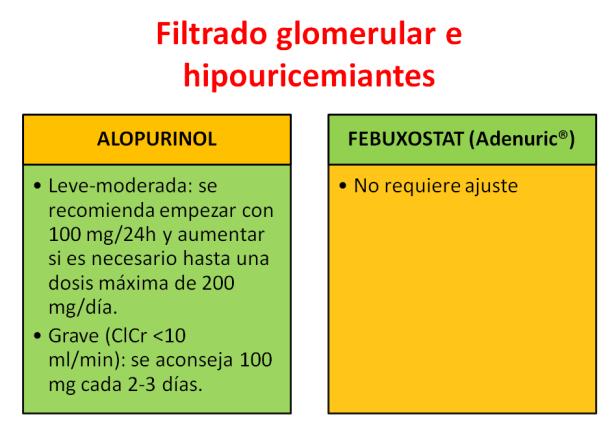 FILTRADO GLOMERULAR-4