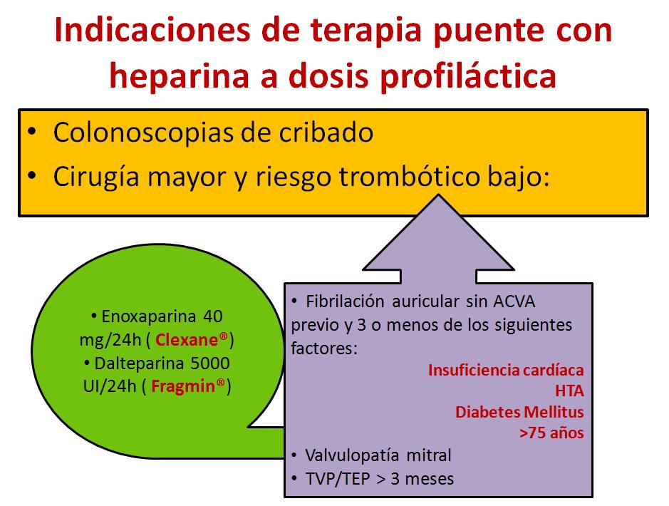 Terapia puente-2