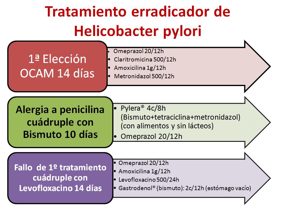 Helicobacter pylori-2