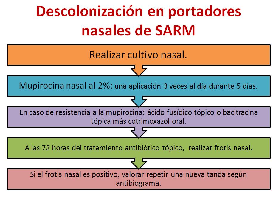 sarm-1