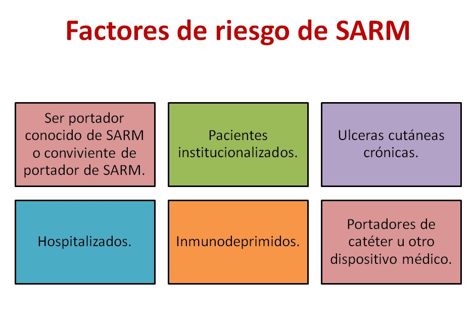 sarm-3