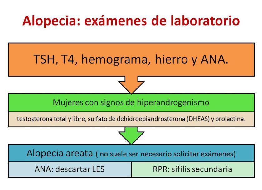 Alopecia-1