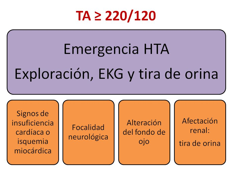 Crisis hta-1