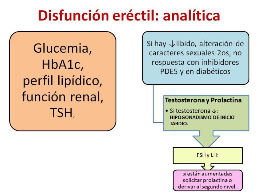 Disfuncion erectil-2