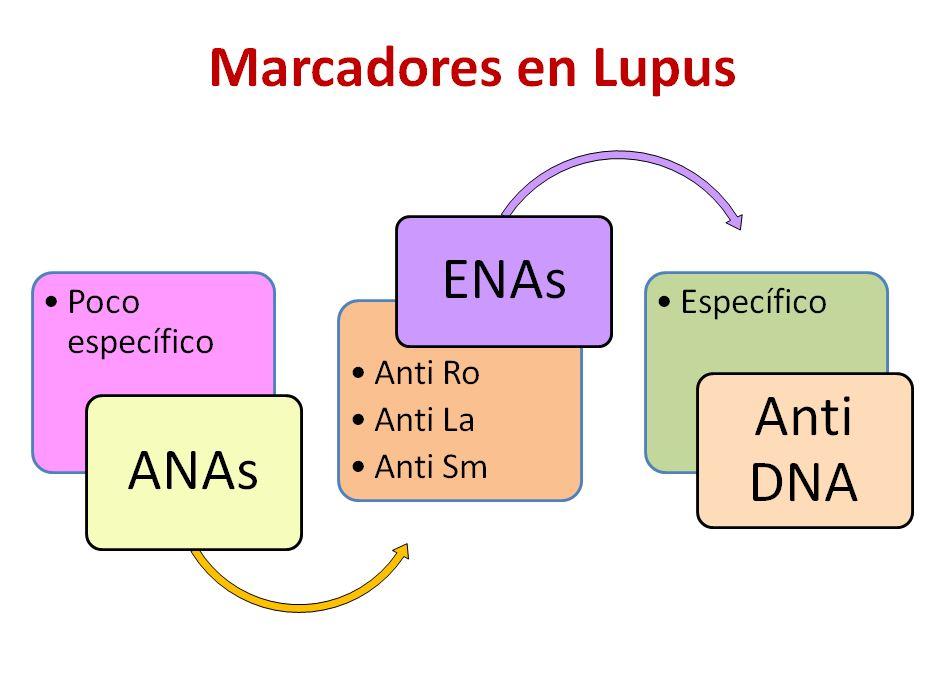 marcadores reuma-2