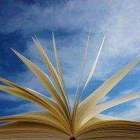 Volumen I y II: Más que mis esquemas médicos: últimos ejemplares